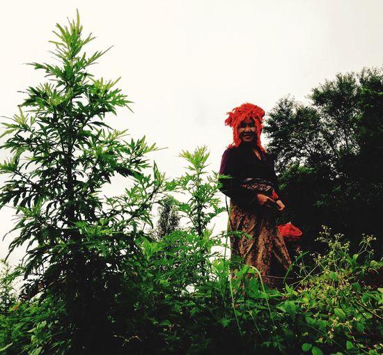 Trekking Burma Hilltribe Indigohilltribe EyeEmNewHere Plant Nature Tree People Clothing Day Standing