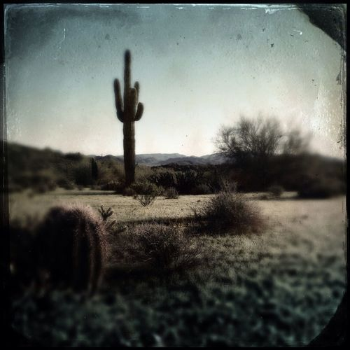 Hipstamatic Tinto In The Desert