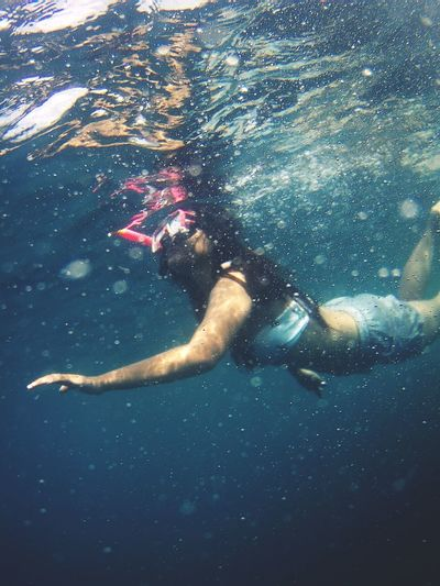snorkeling is fun UnderSea Water Swimming Underwater Close-up Underwater Diving Diving Equipment Scuba Diver Diving Flipper Diving Suit Diving Aqualung - Diving Equipment Scuba Mask Whale Shark Wetsuit School Of Fish Scuba Diving Red Sea Reef Diving Into Water Low Section Shore Snorkeling