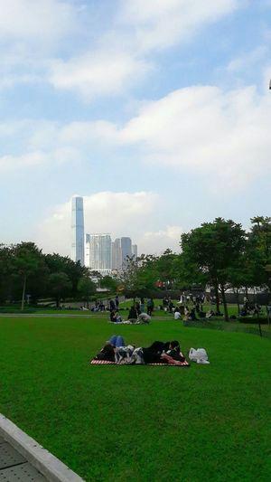 Urban Skyline Skyscraper Sky Cloud Green Grass Victoria Harbour Kowloon View From Victoria Harbour