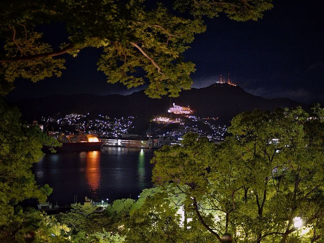 Night Lights View from Glover Garden : Nagasaki port and Mt.Inasayama Nightphotography Trees Cityscapes Nagasaki City A Frame Within A Frame / L10K 50mm prime Lens No Filter Nagasa-Kirei ( ナガサキレイ ) de Good Night