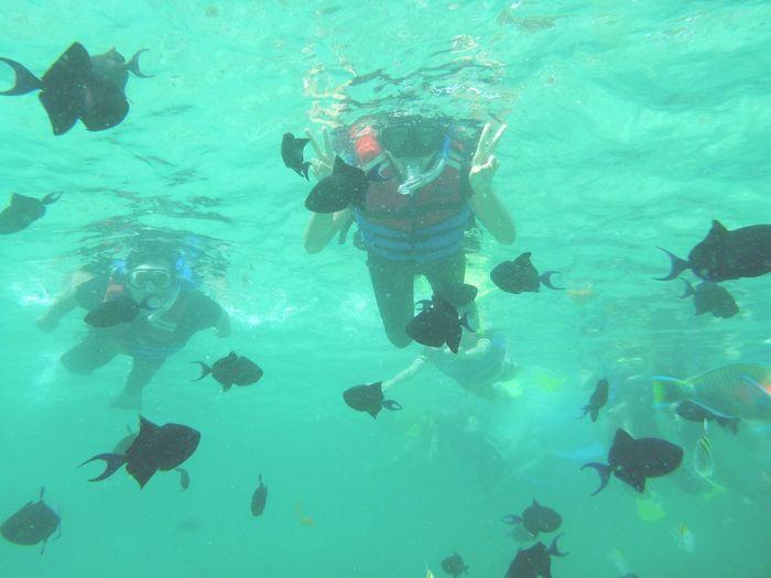 Iboih Snorkeling Snorkel Pulauweh Sabangisland Sumatera Island Sabang Aceh