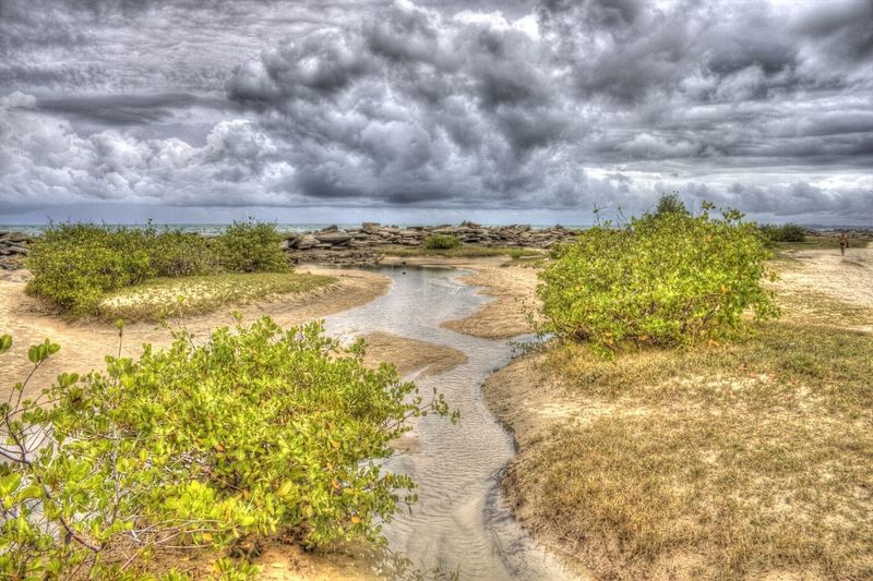 Beach Beauty In Nature Cloud - Sky Day Grass Landscape Nature No People Outdoors Plant Sand Scenics Sea Sky Storm Cloud Tranquil Scene Tranquility Water Weather