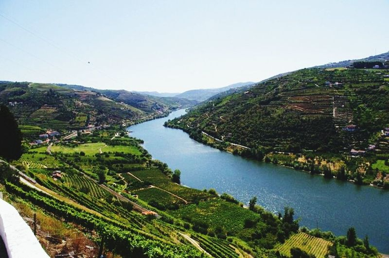 Douro River in Douro, Portugal. Portugal Riodouro Vineyards  Douro
