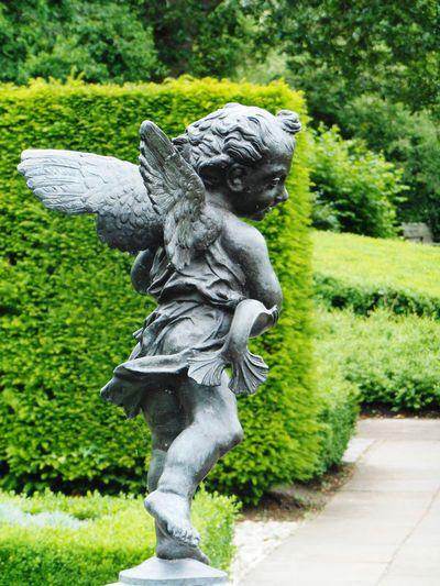 Sculpture Garden Flowers,Plants & Garden Kew Gardens Kew Palace