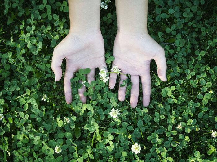 High angle view of human hand