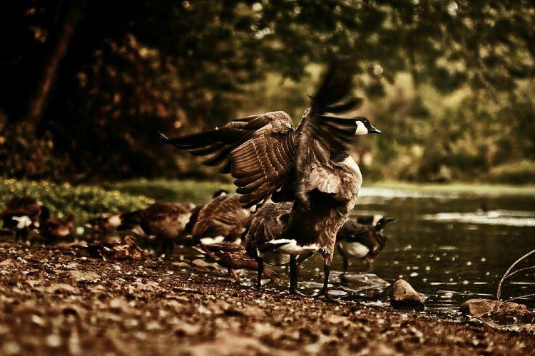 Newark Landscapes Landscape_photography Streetphotography Photography Wavegodphotography Cinematography Landscape