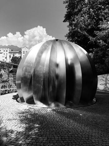 The metal cactus, Meran, Italy IPhone Sculpture Cactus Italy Meran IPhoneX Blackandwhite Blackandwhite Photography Nature Plant