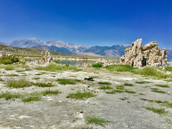 Mono Lake California Vacations Road Trip Travel Destinations Mono Lake Mountain Sky Environment Scenics - Nature Landscape Beauty In Nature Tranquil Scene Tranquility Blue Nature Mountain Range Plant No People Day Land Non-urban Scene Outdoors Tree Field Growth
