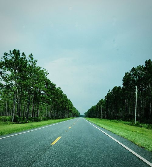 Rainy road trips to Georgia The Way Forward Diminishing Perspective Vanishing Point What Lies Beyond... Rain Overcast Clouds Green Pine Trees Country Road Empty Asphalt Long Remote Blue Beauty In Nature Landscape Repetition