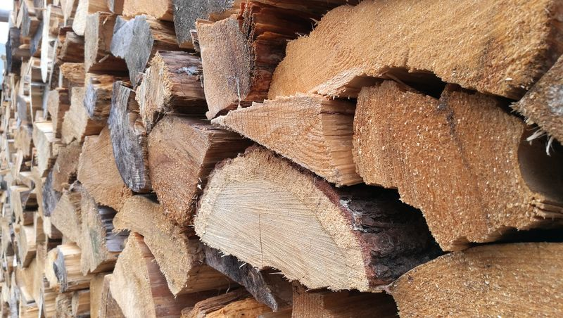 Woodpile Backgrounds Full Frame Stack Textured  Forestry Industry Timber Heap Log Close-up Pile Tree Ring Firewood