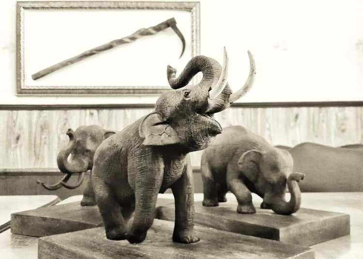 Animal Representation Sculpture No People Day Indoors  Statue Elephant Model Close-up Coffee Time Decoration Toysphotography Elephant ♥
