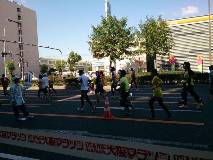 31km地点 大阪マラソン