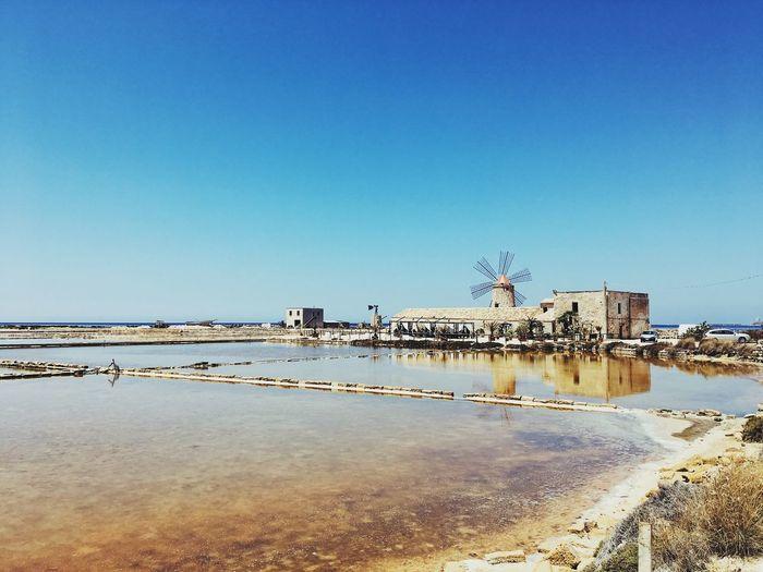 Cranes on beach against clear blue sky