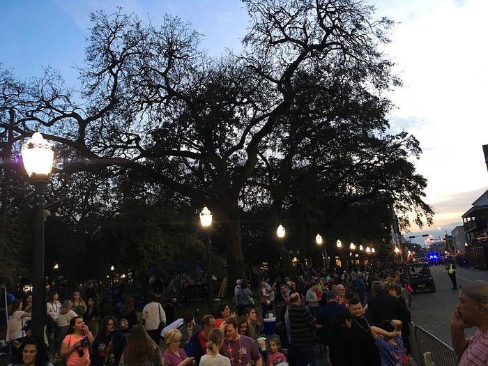 The Original Home of Mardi Gras Mardi Gras EyeEm Gallery EyeEm Selects Group Of People Crowd Large Group Of People Tree Real People Plant Men Outdoors Celebration Illuminated City Lifestyles