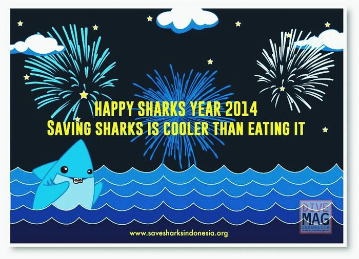 Happy New Year 2014 Check This Out Savesharks This Is My Way