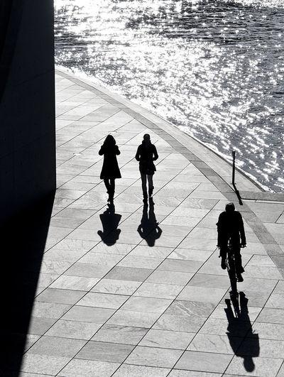 Berlin Berliner Ansichten Blackandwhite Bycicle Fahrrad Frauen Licht Und Schatten Lifestyles Light Light And Shadow Mann Real People Regierungsviertel Street Ufer Walking Weekend Activities Women