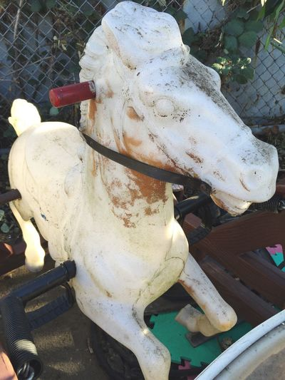 L. Jeffrey Moore Animal Themes No People Domestic Animals Livestock Outdoors Cow Mammal Day Toy Horse The Week On EyeEm