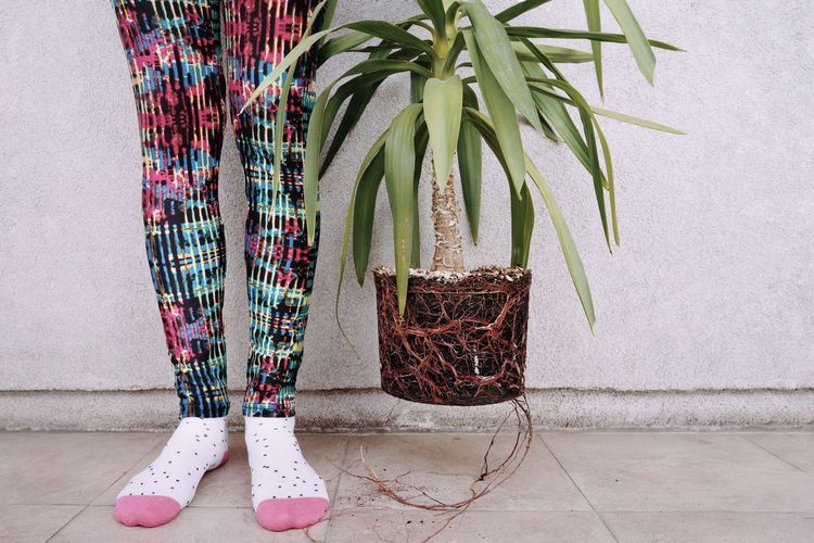 Floating Interior Plant Root Roots Plant Root Plant Leaves Nature One Person Human Body Part People Low Section Standing Human Leg Human Foot Feet Human Limb Limb The Still Life Photographer - 2018 EyeEm Awards The Creative - 2018 EyeEm Awards Urban Fashion Jungle A New Beginning