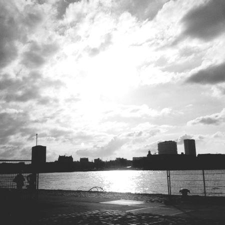 Rotterdam Asome Skyline Sky