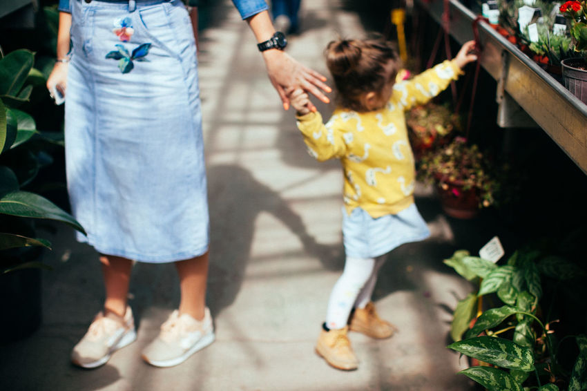 A little girl holding her mothers hand Gardening Mother Mother And Daughter Plants Bound  Casual Clothing Child Childhood Family Females Girls Innocence Lifestyles People Plants And Flowers Plantshop Positive Emotion Togetherness Women This Is Family