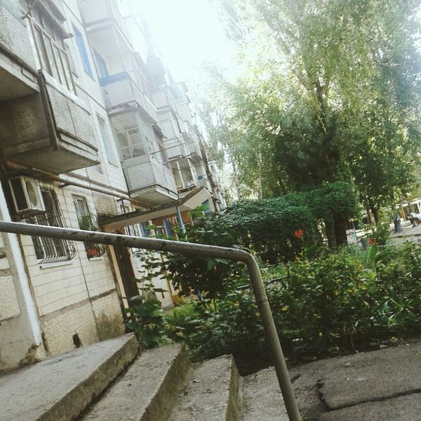 лето Юбилейная дома деревья двир двор отдых Check This Out Enjoying Life Hi!