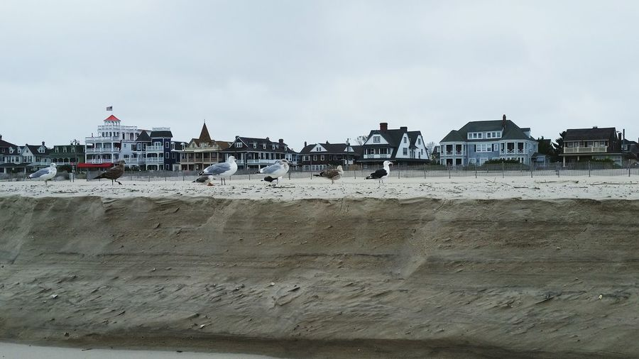 Beach Outdoors