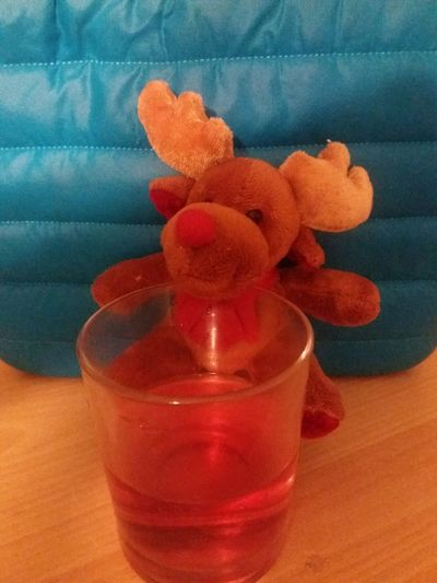 cuddly toy reindeer with drink Chrismas Christmastime Close-up Cuddly Toy Cuddly Toys Drink Evening Evening Light Focus On Foreground Freshness Glass Nature No People Orange Color Red Reindeer Reindeers Still Life Xmas Time Xmastime
