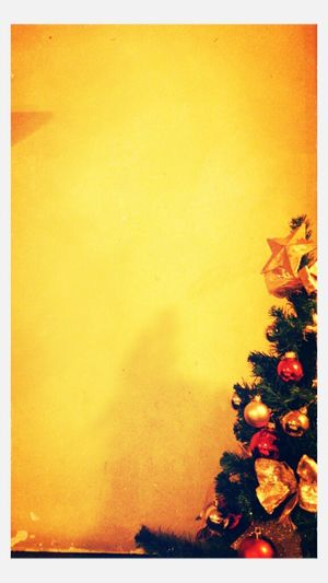Hanging Out I See Christmas ☆☆☆...