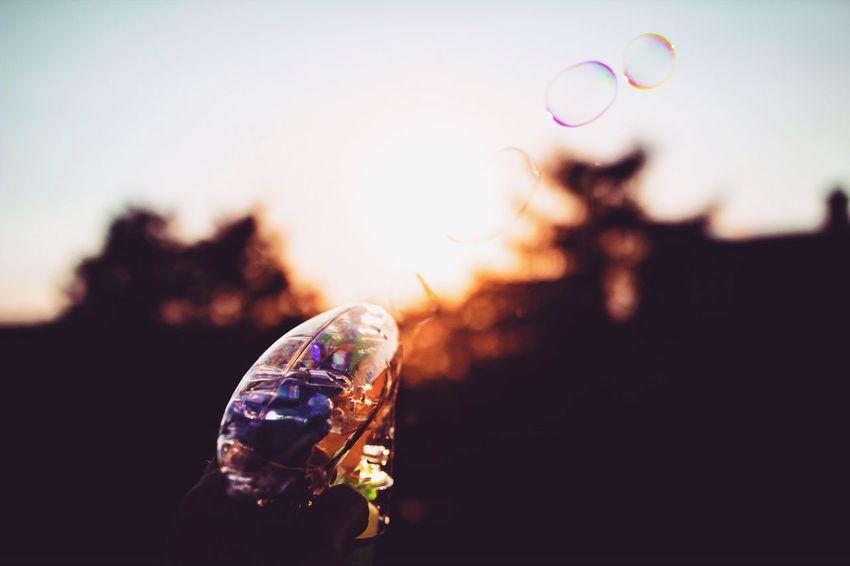 Bubbles Bubble Bubblegun Fun Evening Light Evening Sun Sundown Sunset Summer Evening Funny Enjoying Life Easy Life Sigma Sigma 24mm Sigma24mmart Showcase August Colour Of Life Colorful Eyeemphoto Live For The Story
