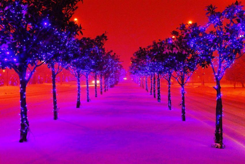 """Μία υπέροχη φωτογραφία από τον Pornalis Mixalis. Λεζάντα: """"Χτες βράδυ αργά στο πλανήτη Άρη μπροστά στο Δημαρχείο"""" Volos In Greece Pornalis Mixalis Snow City View"""