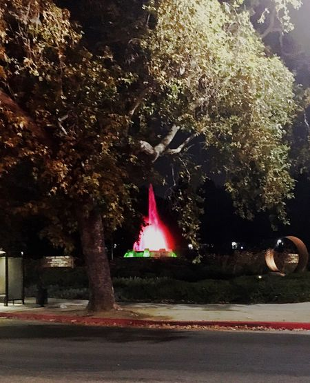 Fountain in a Park Losangeles Fountain Colorsofnight Urban Nature Glendale