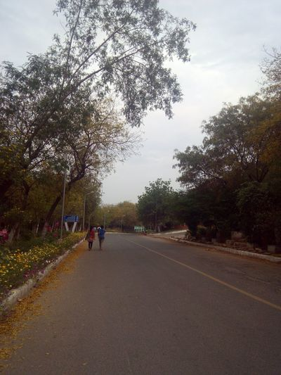 Enjoying Pleasant Evening ......roads with no ends So Fresh, So Clean