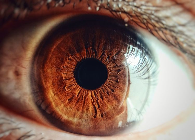 Macro Macro Photography Close-up Eyse Beuatiful❤ Girls SexyGirl.♥ Human Eye Looking At Camera Eyelash Portrait Eyesight Human Body Part Iris - Eye Eyeball Sensory Perception One Person People Day Outdoors EyeEmNewHere EyeEm Best Shots