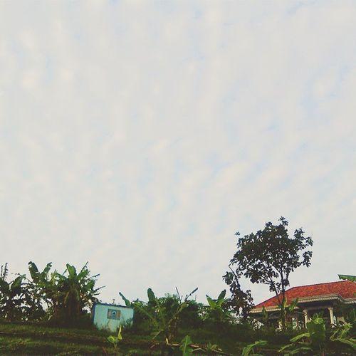 selamat pagi rumah ☺😍 Home Houseparty Semarang Seputarsemarang Ungaran View Nature Photooftheday Beatyfull With Vscocam