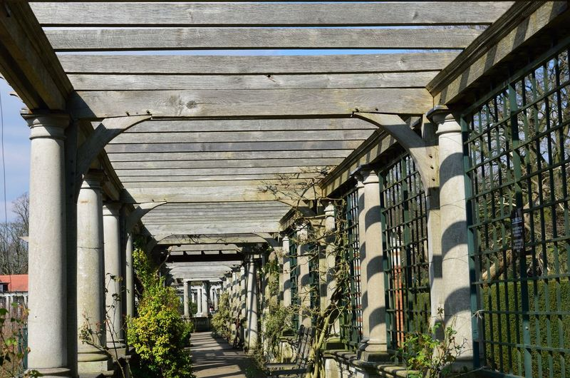 Passage under pergola Architecture Built Structure Building Exterior Architectural Column Pergola Covered Plants Beams Wood - Material Outdoors Colonnade Traditional Old Large Passage
