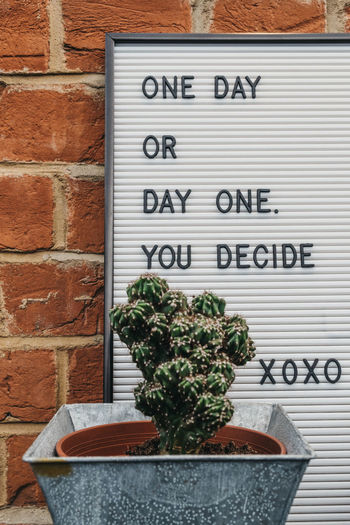 One day or day one motivational quote on a white board against brick wall. Millenials Youth Culture Message Sayings Letter Board Motivation Inspiration Concept Decision Choice Positive Emotion Communication Text Western Script Growth No People Brick Potted Plant Brick Wall Sign Quote Decoration