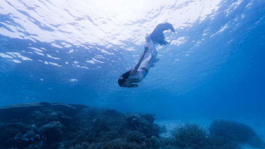 Woman In Mermaid Costume Swimming In Sea