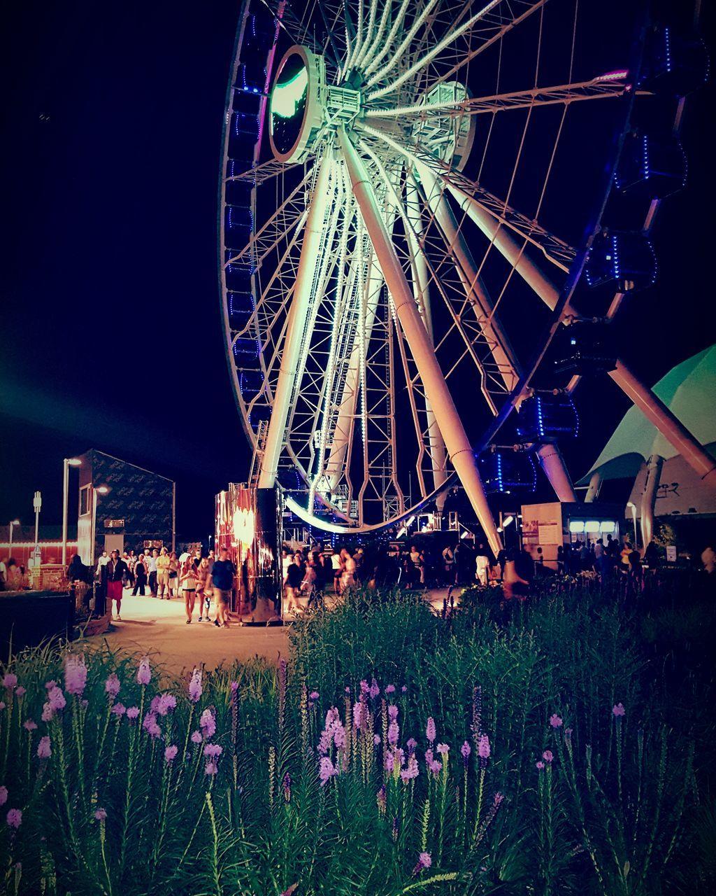 arts culture and entertainment, amusement park, leisure activity, ferris wheel, amusement park ride, outdoors, flower, fun, no people, night, nature, sky