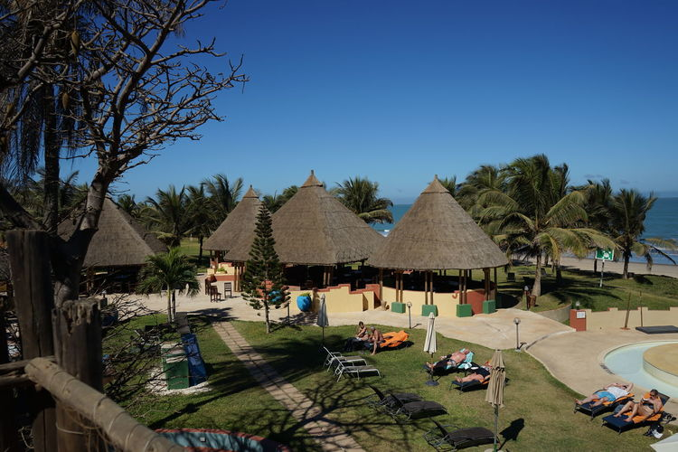 Gambia, Africa Architecture Beach Hotel Blue Building Building Exterior Built Structure Clear Sky Day House Land Lounge Chair Nature No People Outdoors Parasol Plant Roof Sky Sunlight Sunshade Swimming Pool Thatched Roof Tree Umbrella
