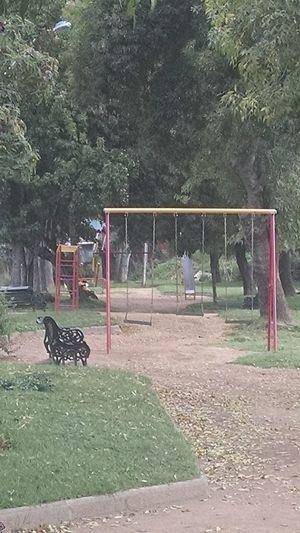 Parques  Vintage Photo Park