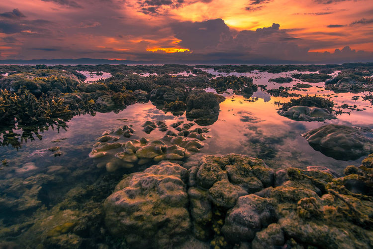 Coral Garden Sunset Beauty In Nature Cloud Cloud - Sky Dramatic Sky Landscape Majestic Mountain Nature No People Non-urban Scene Orange Color Outdoors Philippines Remote Rock Rock - Object Rock Formation Scenics Sky Sunset Sunset_collection Tranquil Scene Tranquility Travel Destinations Water