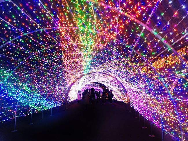 Yomiuriland Tokyo Theme Park Christmas Jewellumination Light Tunnel Real People Illuminated Silhouette Leisure Activity Men Multi Colored Togetherness