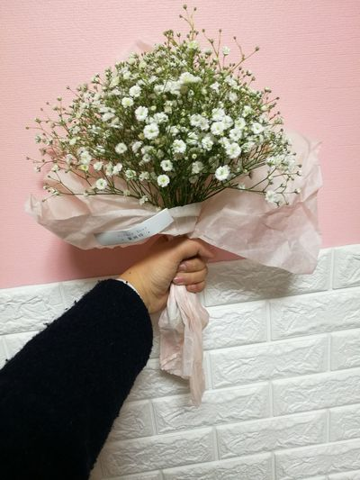 Flower Human Hand My Hand  ♡♡♡ Lifestyles Beauty In Nature Dry Flower