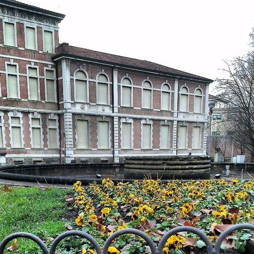 Università  Rovigo Consorzio Viamarconi