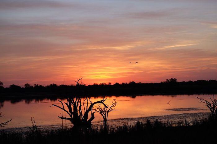 Sunset Sunset_collection Sun Safari Safari Sunset Lake View Flyingbirds Iphonephotography Iphone6 Red Evening Evening Sky Pretoria Neighborhood Map