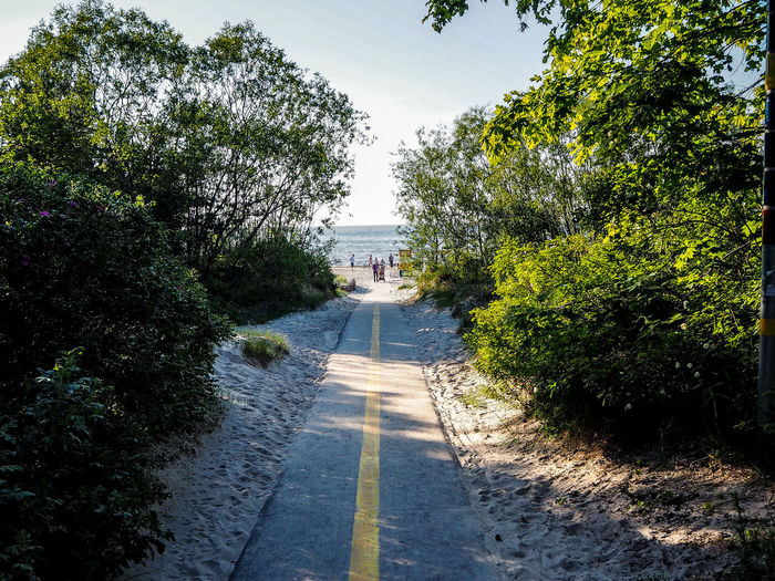 Baltic Sea Baltics Jurmala JurmalaBeach Latvia Architecture Beauty In Nature Day Growth Nature No People Outdoors Plant Road Scenics Sky Summer The Way Forward Tree Water Way To Beach