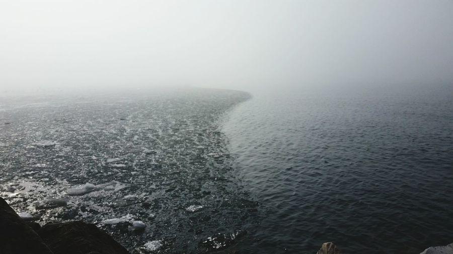 Sea Fog Day