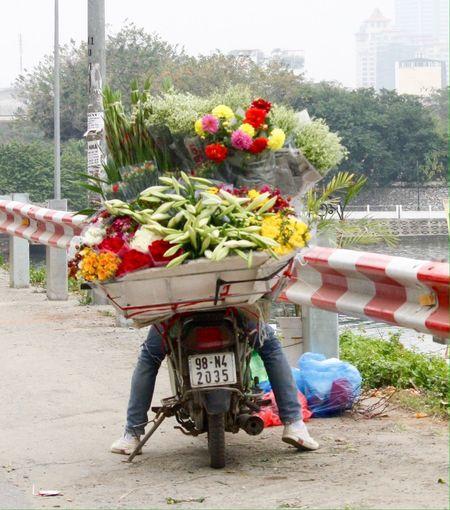 Flowers Flower Seller Selling Flowers Tây Hồ Westlake, Hanoi Hanoi, Vietnam Making A Living