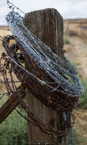 Old Fencepost Animal Themes Backgrounds Barbed Wire Close-up Day Fence Pop Nature No People Outdoors Sky